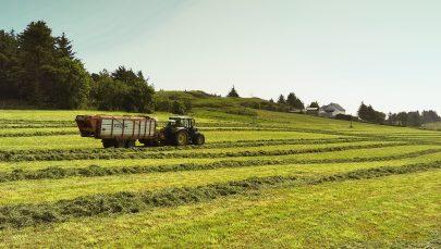 Hausting av gras justert. Foto: Bjørg Karin Dysjaland
